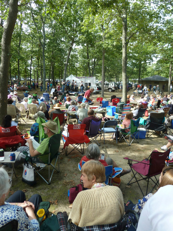Haines Park is packed with fans of great music during the Fiddle n Folk Fest