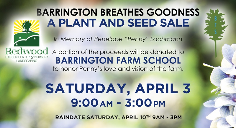Yay! A Spring Plant Sale Is Coming from Confetti Kids! @ Bay Spring Community Center